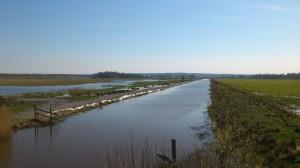Kvismare kanal