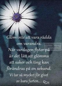 FB_IMG_1438415952935